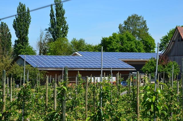 Fotowoltaika dla rolnika: program Agroenergia poniżej oczekiwań?